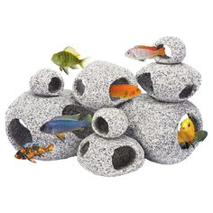 Penn Plax Stone Replica Aquarium Decoration Realistic Granite Look with Fish Hideaway 8 Piece Set - All About Betta Fish Tanks Betta Aquarium, Betta Fish Tank, Fish Tanks, Aquarium House, Dwarf Frogs, Frog Tank, Aquarium Accessories, Aquarium Backgrounds, Aquarium Ornaments
