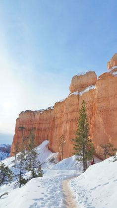 What's it like to winter hike the hoodoos in Bryce Canyon on Queens Garden Trail? Couples Vacation, Vacation Ideas, Pumpkin Recipes, Fall Recipes, Dinner Recipes, Winter Hiking, Us National Parks, Winter Photos, Winter Landscape