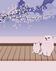Cat and Cherry Blossoms - Lanjee Chee