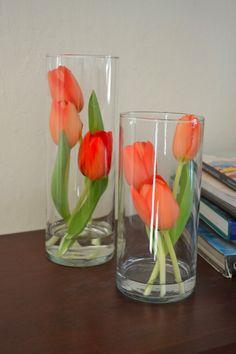 rote Tulpen mit kurz geschnittenen Stielen in Glasvasen arrangiert