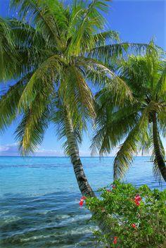 Lagoon, Moorea, French Polynesia