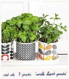 Orla herb pots