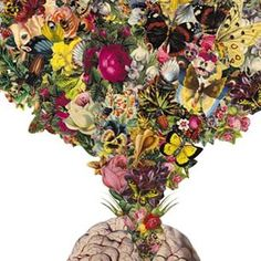 "Amazing ""Open + Expand"" cut paper collage #art piece by Travis Bedel. #nature #botanicals #anatomical #brain #inspiringelements #tataharper #seasonoflove"