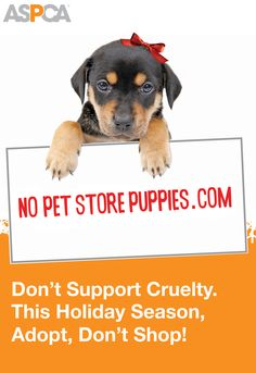 Spread the word about pet store puppies! Sadly, almost all puppies purchased in stores come from puppy mills, where profit is given priority over the well-being of the dogs. We've created a special Facebook cover photo for you to raise awareness. Follow this link to do your part for puppies: www.aspca.org/blog/will-you-share-our-awesome-puppy-mill-billboard-facebook