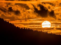 Seattle sunset: The sun sets last week in Issaquah,