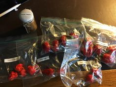 friend mailed me these any suggestions for eating them? (Carolina Reaper Giant Ghost Black Pearls Red Morogu and Butch T Scorpions) #TTDD