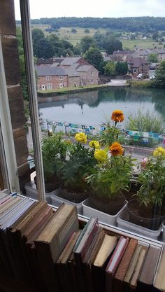 earlgreyandscones: View from Scarthin Books, Cromford