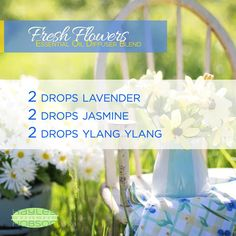 There's nothing better than the fragrance of fresh flowers! Well, this essential oils diffuser blend allows you to enjoy that aroma whenever you want! Which is especially beneficial if you live somewhere the flowers aren't out yet. Aside from the great aroma, Lavender can help reduce anxious feelings and relieve tension, Jasmine evokes feelings of joy, peace, and self-confidence, and Ylang Ylang will act as a great mood booster. www.hayleyhobson.com