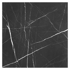 Nero Marquina | Honed Marble Tile