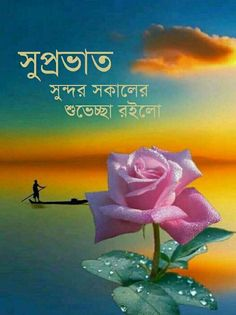 Good Evening Wallpaper, Good Morning Flowers Quotes, Good Morning Animation, Good Morning Images Download, Gulzar Quotes, Good Morning Happy, Morning Messages, Bangla Quotes, Hadith