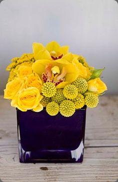 Incredibly yellow floral arrangement of craspedia, roses and cymbidium orchids in a cobalt blue vase. Natalie Galasso Designs #yellow #flowerarrAngement #cymbidium