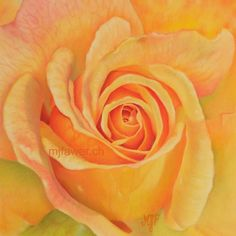 Rose jaune au pastel sec Pastel, Plants, Flowers, Realistic Drawings, Pink Drawing, Cake, Plant, Crayon Art, Planets