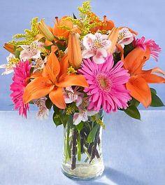 Pink orange flowers in a vase