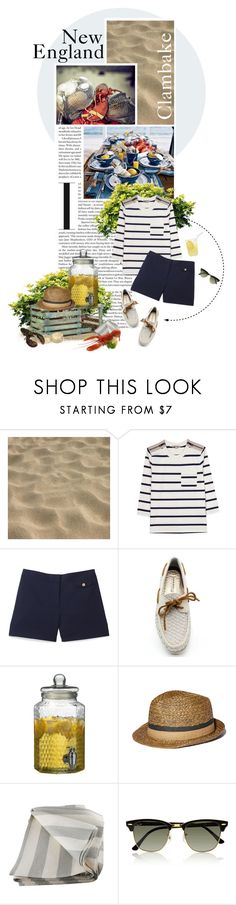 """""""Out Of Cape Cod Tonight..."""" by hollowpoint-smile ❤ liked on Polyvore featuring Burberry, Tory Burch, Sperry, Vince Camuto and Ray-Ban"""