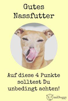 Hund | Futter | Nassfutter |