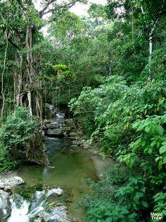 MAGIC TOUR COLOMBIA Lo mejor de la naturaleza en Minca, Sierra Nevada de Santa Marta...#travel #adventure #cultures
