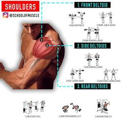 "5,666 Likes, 44 Comments - School Of Muscle (@schoolofmuscle) on Instagram: ""✅ Want Full 3D Shoulders? Hit 'Save' & Try These Out Next Time . . . ✅Now that you've got an…"""