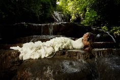 http://www.bing.com/images/search?q=trash the dress