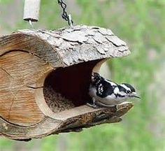 log bird feeders - Yahoo Search Results