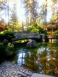 Manito Park. Spokane Washington.