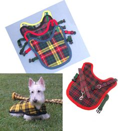 PetsLady.com:  Pet Couture: Now Your Dog Can Match Your Kilt   - every terrier needs an authentic Scottish plaid!