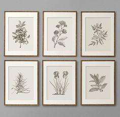 Unique Botanical Prints // Home Decor // Wall Decor // Kitchen Decor // Printables // Designed by Oakhouse