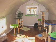 Cat Room Ideas | Cat room | they would totally love this !!!
