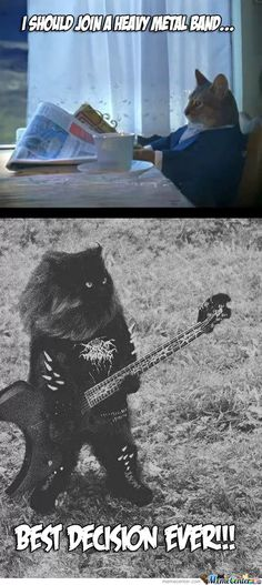 Litterbox Of Despair. Please Come Up With Some Band Names. by borntobefeatured - A Member of the Internet's Largest Humor Community Music Humor, Music Memes, Music Quotes, Crazy Cat Lady, Crazy Cats, Hard Rock, Kerry King, Power Metal, Nu Metal