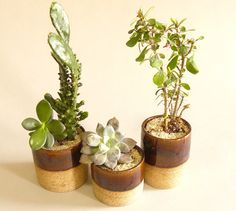 Speckled Planters - Set of 3