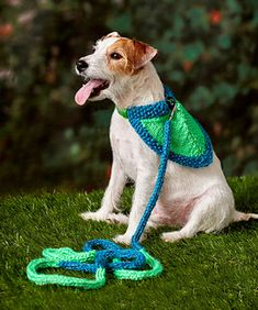 Choose any two colors of this amazing yarn and your dog will shine while sporting this bandana scarf on walks. You'll love the way this yarn reflects the flash of a camera. We've included five sizes for a perfectly fashionable accessory, whatever your dog size.