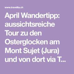 April Wandertipp: aussichtsreiche Tour zu den Osterglocken am Mont Sujet (Jura) und von dort via Twannbachschlucht an den Bielersee April April, Handy Tips, Law School