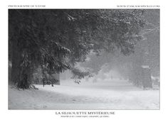 Monochrome, Canada, Silhouette, Snow, Outdoor, Outdoors, Monochrome Painting, Silhouettes, Outdoor Games