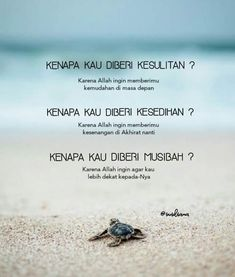 Semua itu ada hikmahnya gaess. Allah juga tau apa yang terbaik untuk hambanya Islamic Quotes Wallpaper, Islamic Love Quotes, Muslim Quotes, Islamic Inspirational Quotes, Reminder Quotes, Self Reminder, Text Quotes, Quran Quotes, Sabar Quotes