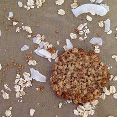 oats and flax coconut crisps: oats, flax, shredded coconut, milk, maple syrup, coconut flour, chia seeds, ginger, cinnamon...