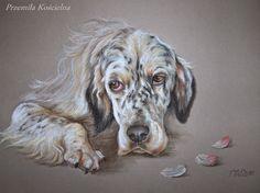 """""""Parrot"""" English setter portrait by Canis Art Studio"""
