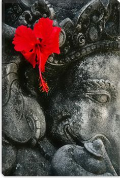 Ganesha and a vibrant hibiscus