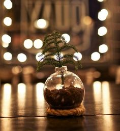 Almost Too Simple Earthy Centerpiece Ideas | AllFreeChristmasCrafts.com