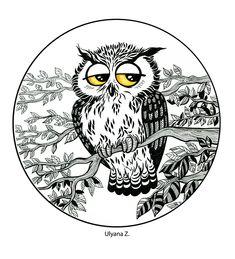 CUTE OWLS. Ulyana ZOLO
