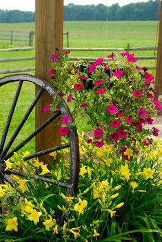 Another way to display my antique wagon wheel! Country Farm, Country Life, Country Living, Beautiful Gardens, Beautiful Flowers, Old Wagons, Country Landscaping, Country Scenes, Farms Living