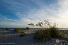 Palm Island! | Hendersonville TN Senior Portrait & Wedding Photography by Stan Dunlap