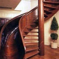 Pretty cool, just not sure if I'd want one in my house.  Hmm...then again, the kids could slide even if its raining/snowy outside.  :-)
