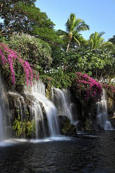 Flower Waterfall, Maui, Hawaii lets go Beautiful Waterfalls, Beautiful Landscapes, Dream Vacations, Vacation Spots, Places To Travel, Places To See, Beautiful World, Beautiful Places, Les Cascades