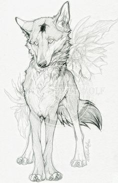 Animal Sketches, Animal Drawings, Art Sketches, Wolf Drawings, Line Art Tattoos, Wolf Tattoos, Tattoo Art, Art And Illustration, Furry Art