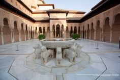 11 Best Patio De Los Leones Images Lion Andalusia Patios
