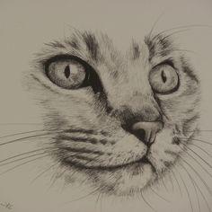 visage chat