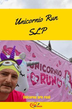 Unicorn Run im Parque Tangamanga – Unicornio Run Unicorn Run, Real Unicorn, Triathlon, Running, St Louis, Men Health, Half Marathons, Envy, Bicycling