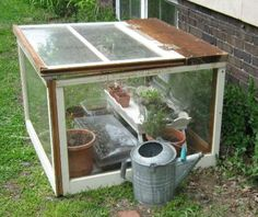 I love this little miniature greenhouse idea! So cute and affordable