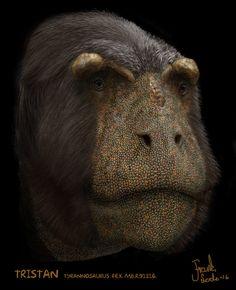 Tristan (Tyrannosaurus rex) by Frank-Lode on DeviantArt