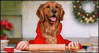"""Just wanted to """"paws"""" and say MERRY CHRISTMAS"""