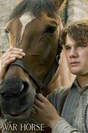 War horse, caballo de batalla